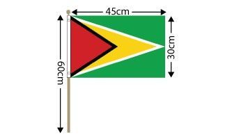 "Guyana Large Hand Flag (18"" x 12"") - 12 PACK"